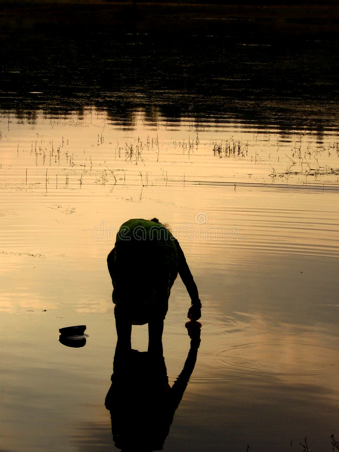 Sunset Woman. A woman works in the river at sunset, silhouette stock photography