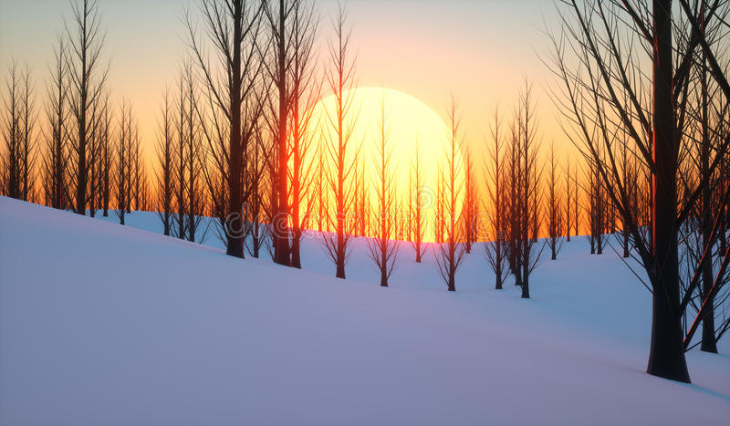 Sunset in the wood royalty free illustration
