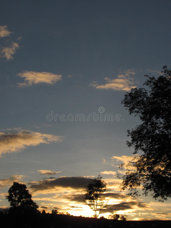 Sunset in the woods with yellow clouds stock photography