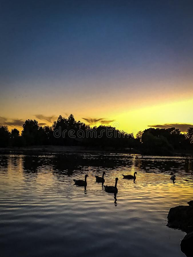 Sunset at Woodward Park In Fresno. A beautiful sunset was captured in Fresno California on a Spring day in 2018 royalty free stock photography
