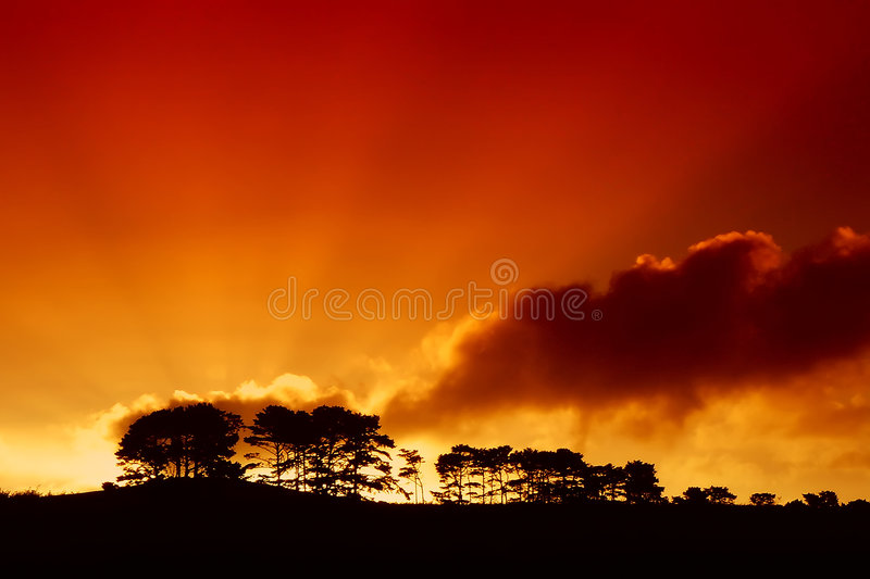 Sunset001 image stock