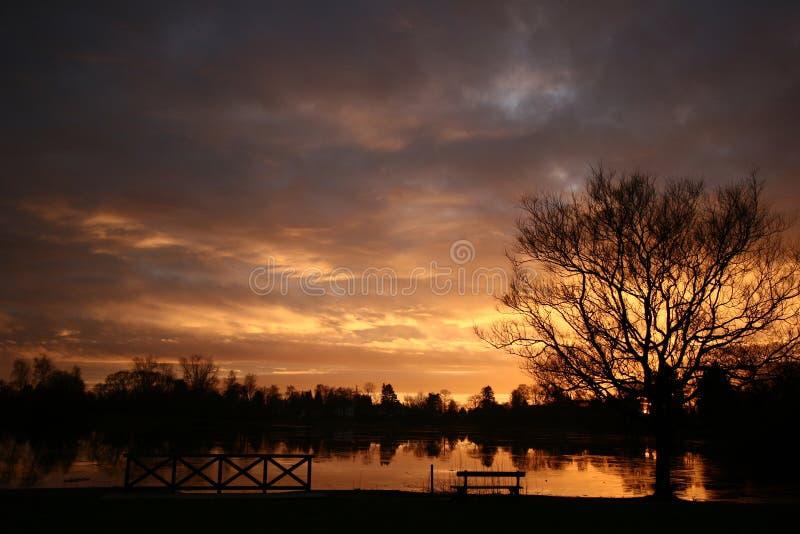 Sunset01 danois photo stock