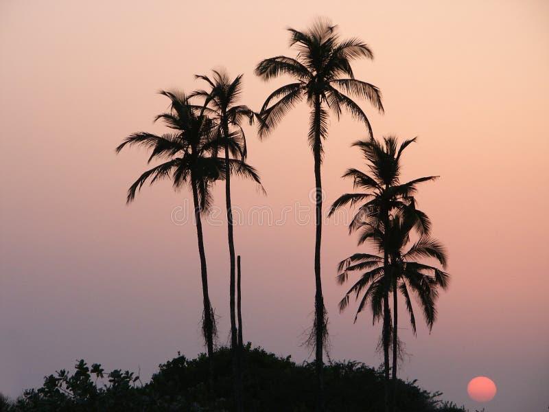 Download Sunset7 stock image. Image of bliss, dusk, colorful, amazing - 522579