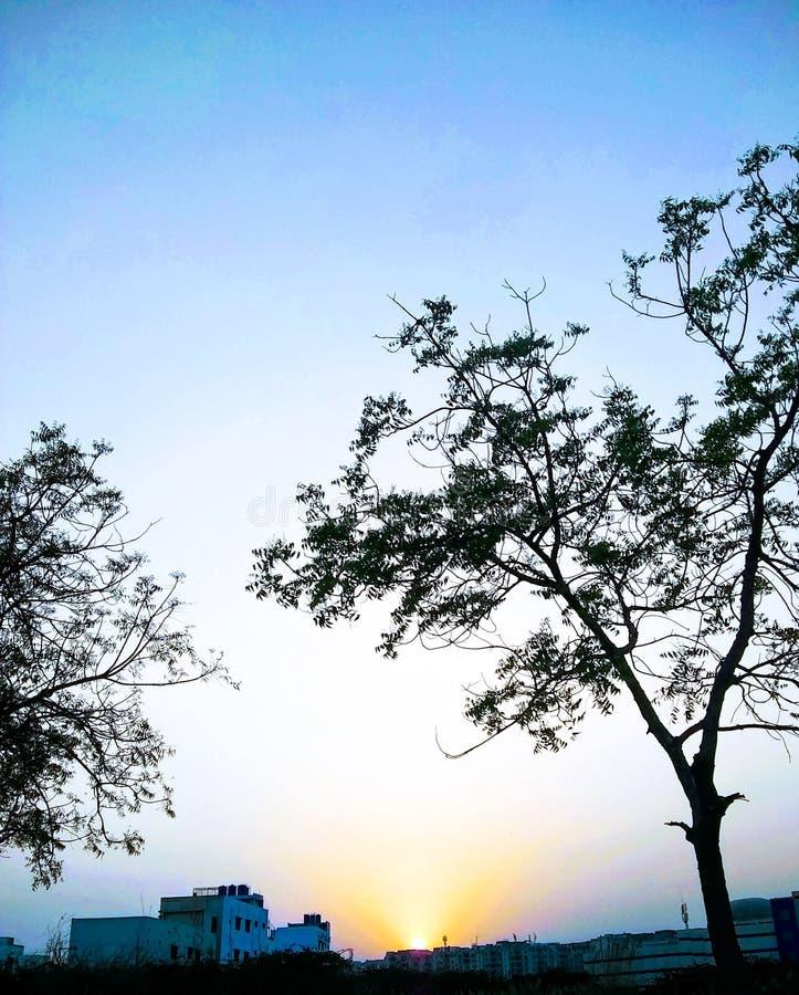 sunsets fotografía de archivo