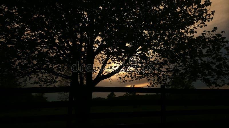 Sunsetting dans les nuages photo stock
