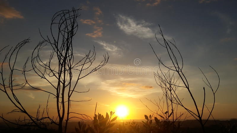 Sunsetview stock images