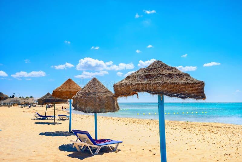 Sunshades na praia no dia ensolarado de Nabeul Tunísia, Norte de África imagens de stock