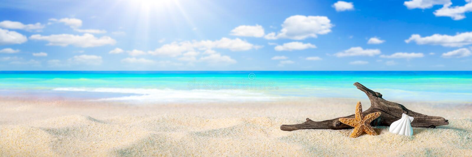 Sunshine On The Beach. Starfish, Shell, And Driftwood On Sandy Seashore With Tropical Water, Clouds And Sunshine - Beach Holiday Background royalty free stock photography