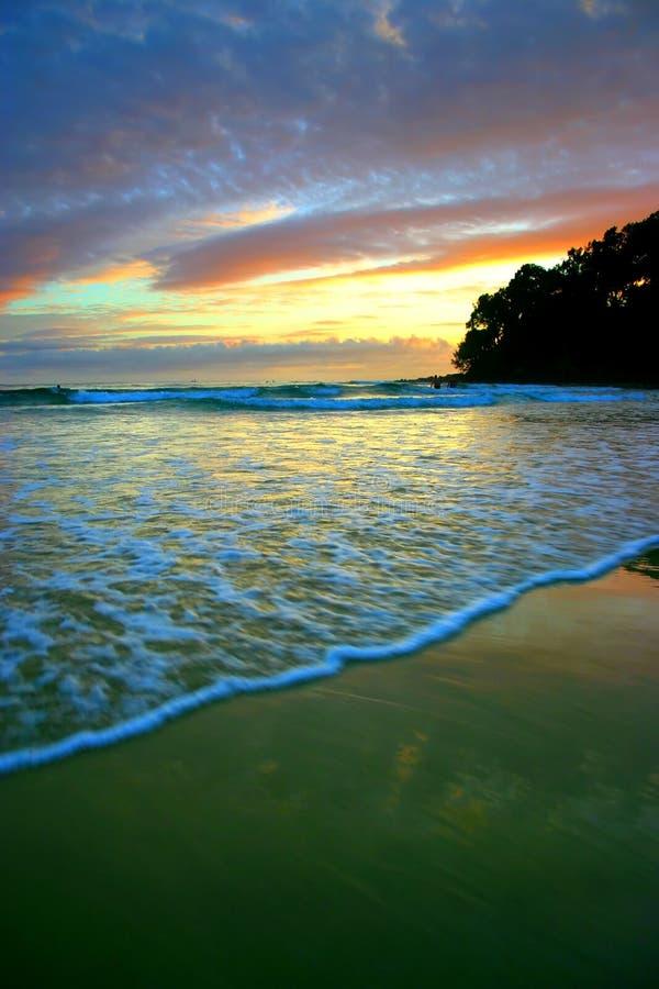 Download Sunshine Coast, Australia stock image. Image of romantic - 3736677