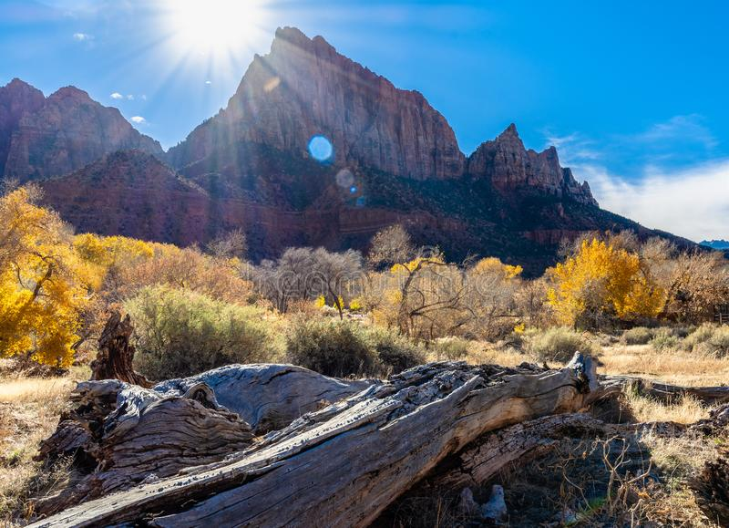 Sunshine at National Park Zion royalty free stock images