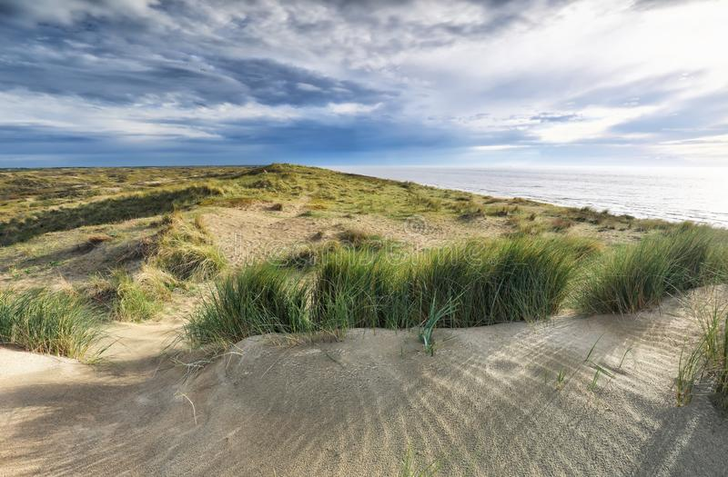 Sunshine over sand dune by North sea royalty free stock images