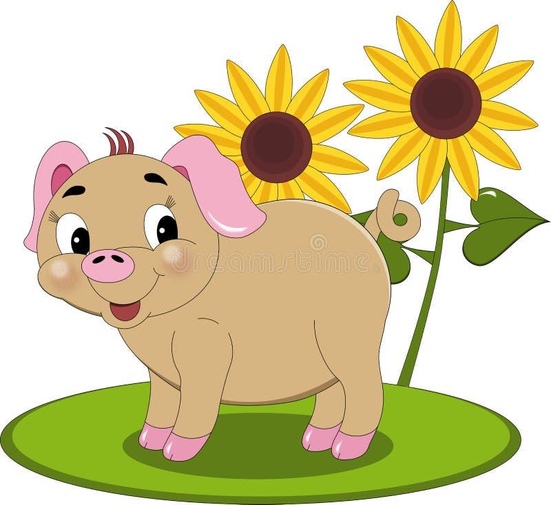 Sunshine Piglet Stock Image