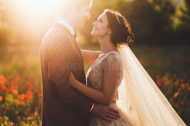 Sunshine portrait of happy loving bride and groom outdoor at sunset. Sunshine portrait of happy bride and groom outdoor in nature location at sunset. Warm stock image