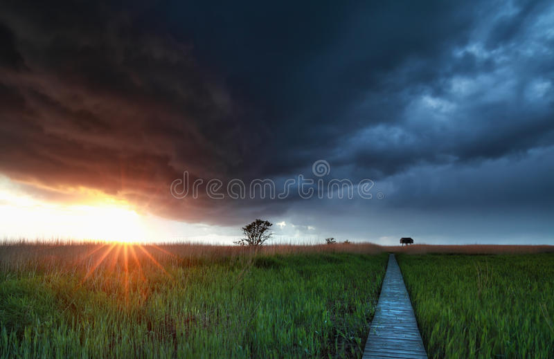Sunshine before rain storm over wooden path stock image
