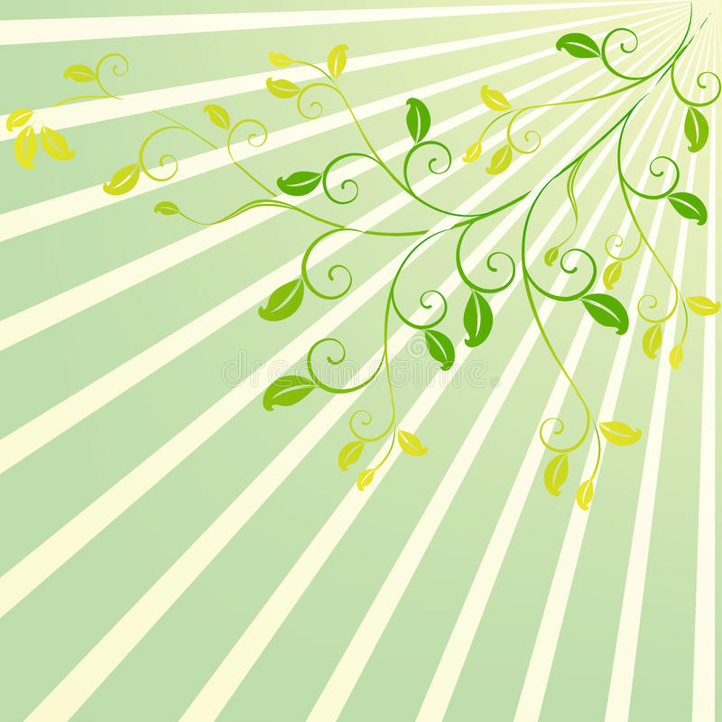 Free Sunshine Scroll Floral Design Royalty Free Stock Photography - 14555607