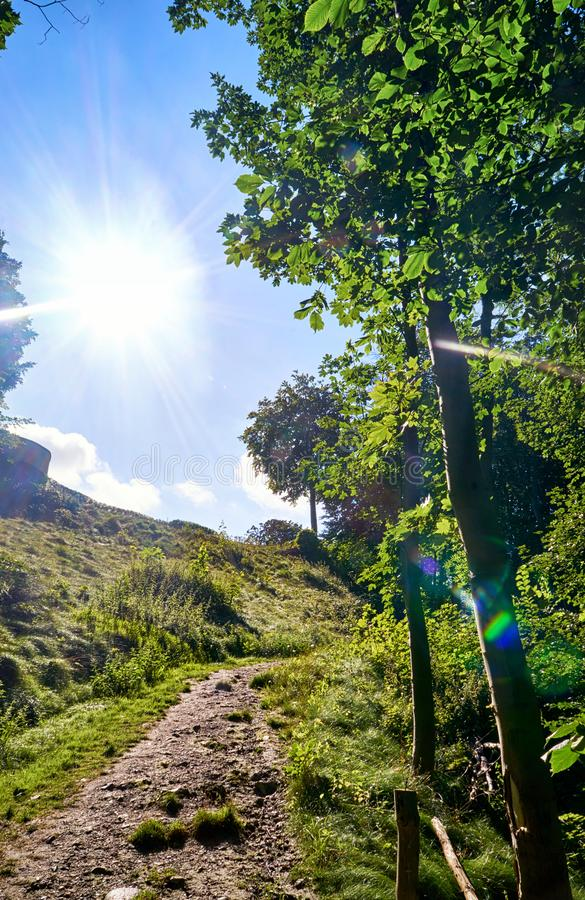 Sunshine on a slope with hiking trail. In Lohme on the island of Rügen stock photography