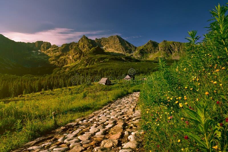 Sunsrise nella valle di Gasienicowa Montagna di Tatra immagini stock