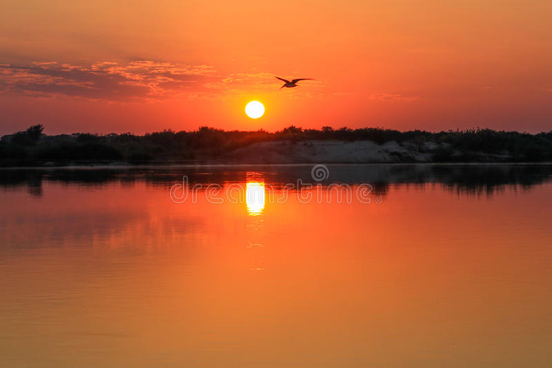 Sunsrise no Zambezi River fotografia de stock royalty free