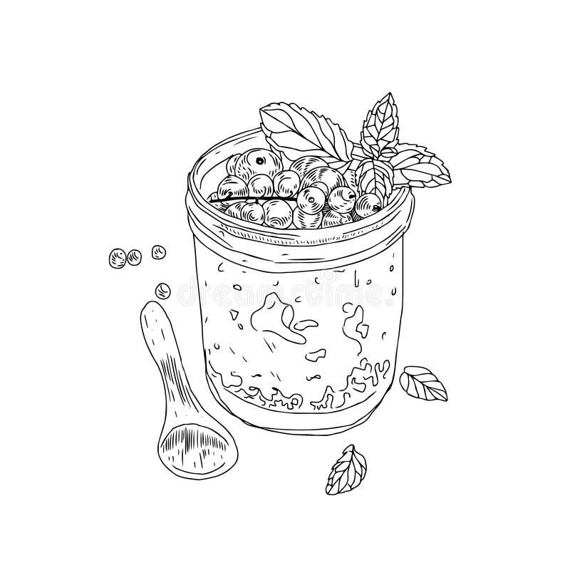 Sunt livsstilbegrepp för vektor Den drog handen skissar illustrationen med den sunda bunken för granola för frukostsädesslag, ske royaltyfri illustrationer