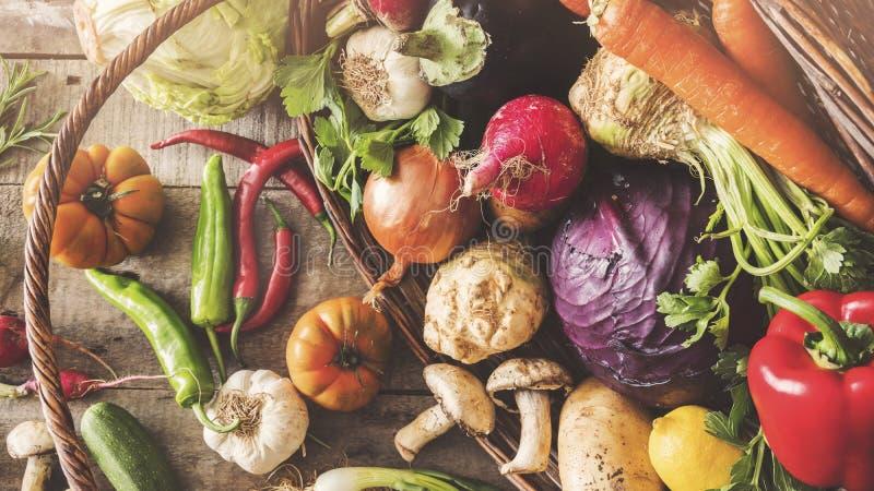 Sunt matbegrepp för nya grönsaker royaltyfri fotografi
