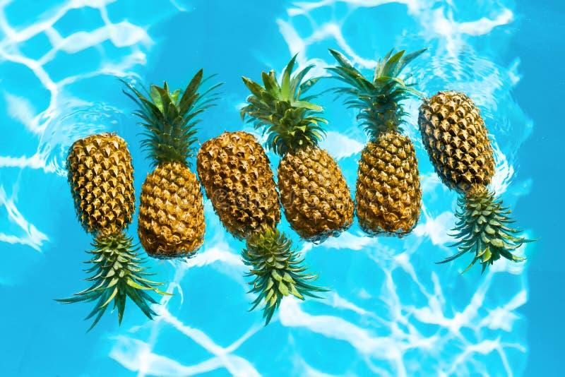 sunt organiskt för mat Nya ananors i vatten Frukt Nutritio arkivbild