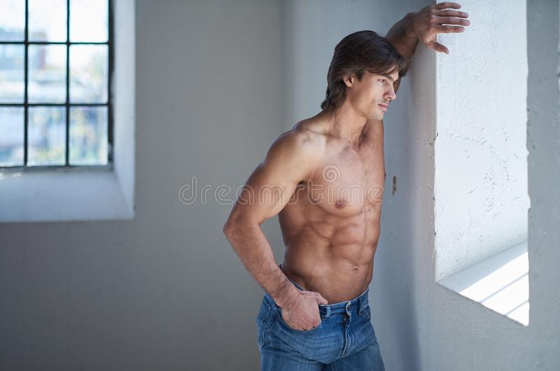 Portrait of suntanned muscular guy in denim jeans. Suntanned muscular male in blue jeans posing in natural light from window royalty free stock images