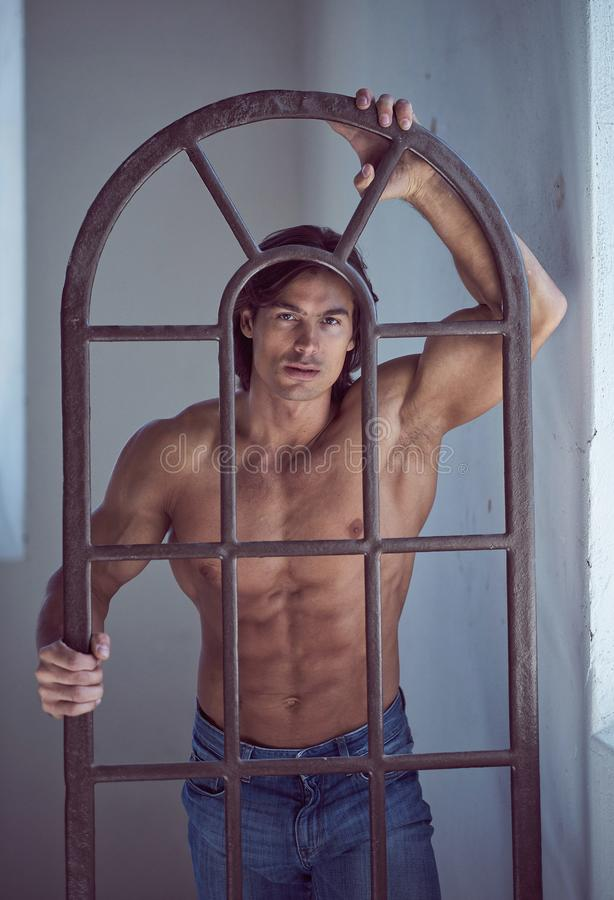 Suntanned muscular male in blue jeans posing. Suntanned muscular male in blue jeans posing in natural light from window royalty free stock photos