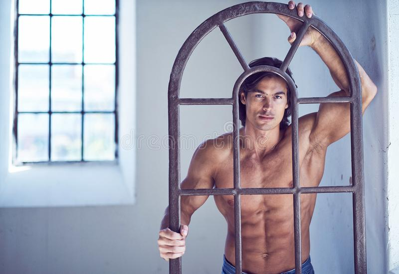 Suntanned muscular male in blue jeans posing. Suntanned muscular male in blue jeans posing in natural light from window royalty free stock photography