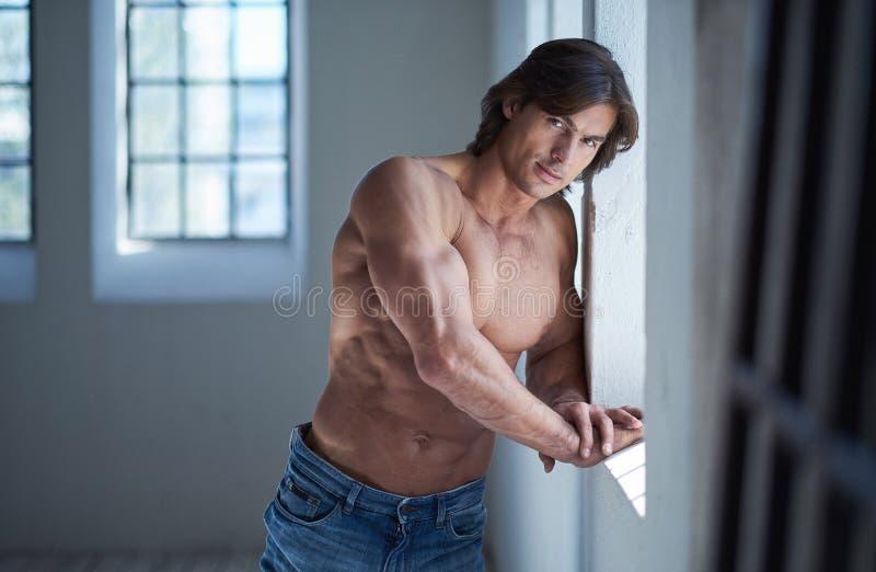 Suntanned muscular male in blue jeans posing. Suntanned muscular male in blue jeans posing in natural light from window stock photo