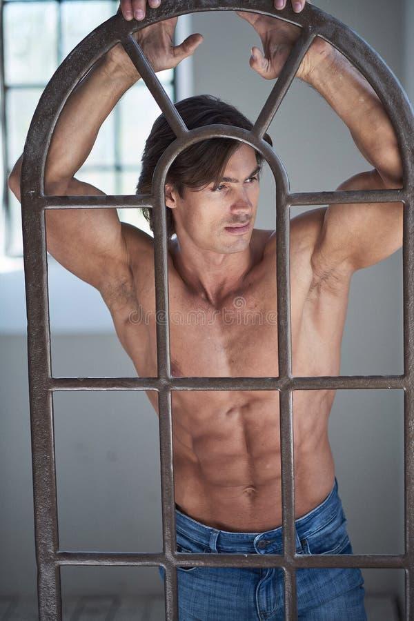 Suntanned muscular male in blue jeans posing. Suntanned muscular male in blue jeans posing in natural light from window stock photos