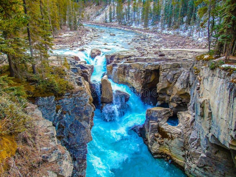 Sunwapta Falls Jasper National Park lizenzfreie stockfotos
