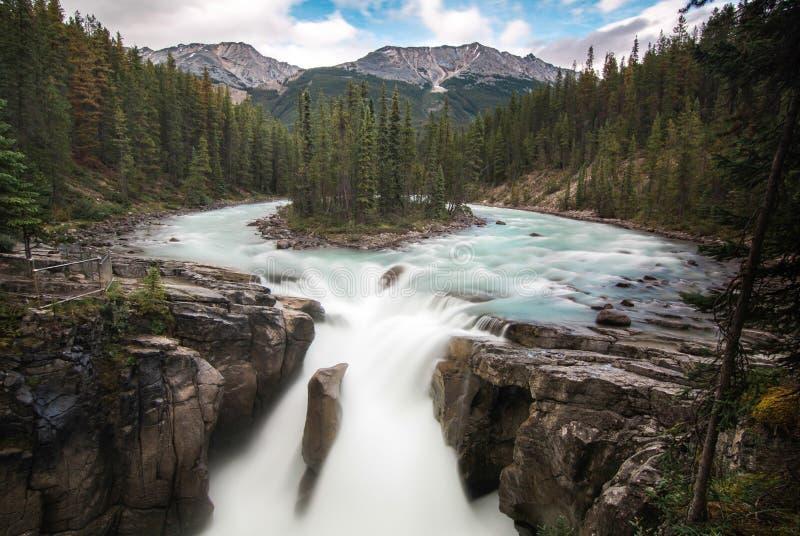 Sunwapta Falls Jasper National Park stockbild