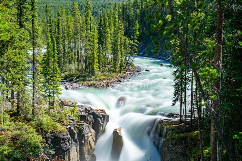 Sunwapta Falls, Jasper National Park images libres de droits