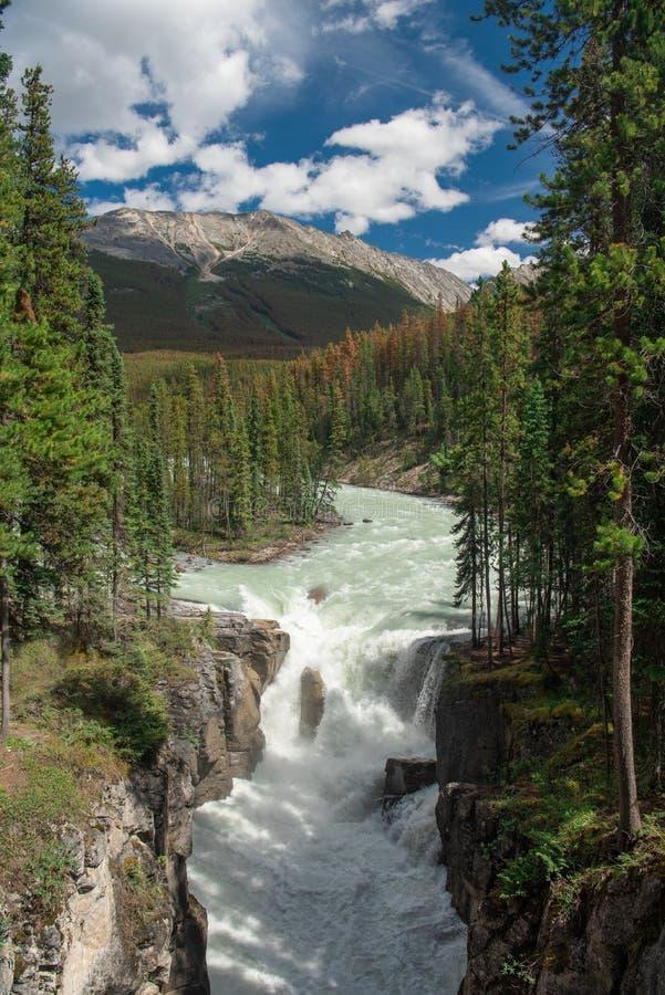 Sunwapta Falls, Jasper National Park, Alberta Canada photographie stock libre de droits