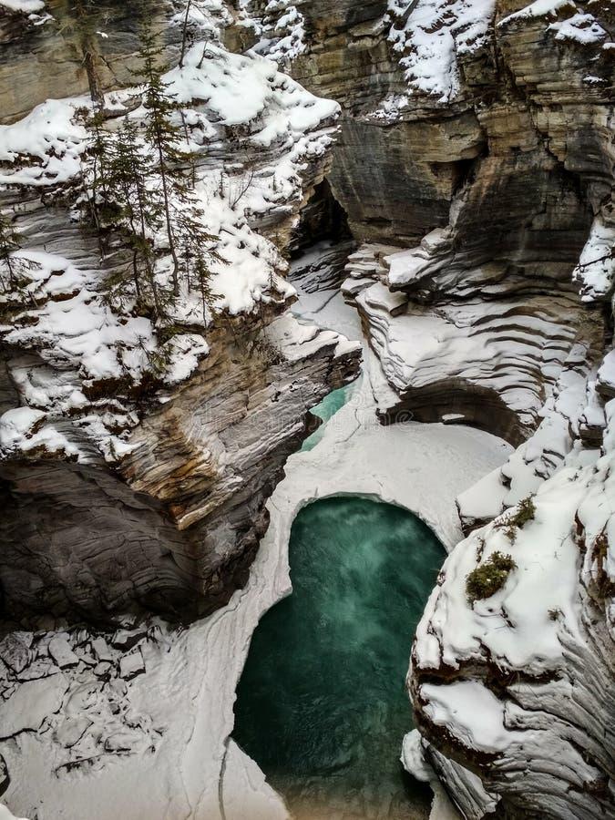 Sunwapta Falls nell'inverno fotografia stock