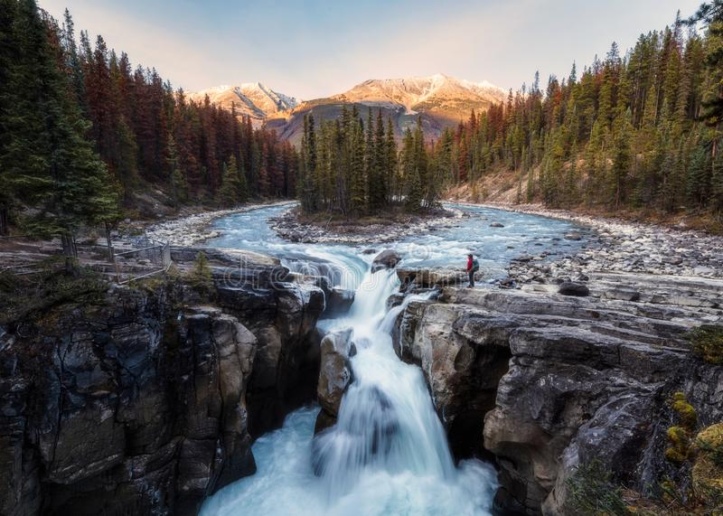 Sunwapta Falls is pair of of the Sunwapta river with traveler standing in autumn forest at sunset stock images
