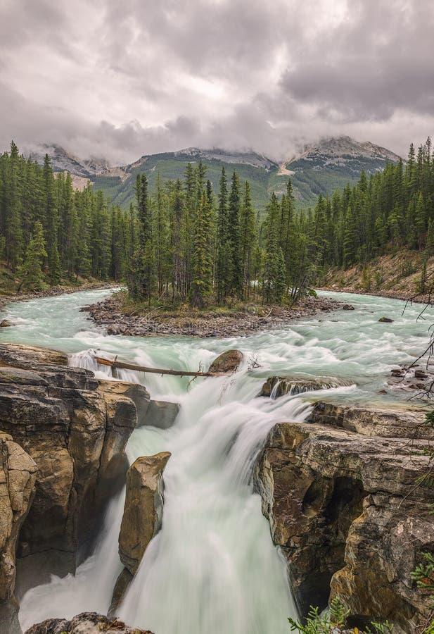 Sunwapta nedgång i Jasper National Park albertan Kanada royaltyfri foto