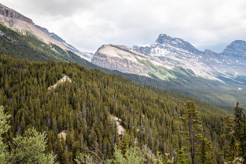 Sunwapta Pass- Jasper National Park- Alberta- Canada. Sunwapta viewpoint in Jasper National Park offers a spectacular view of the valley below in Banff stock image