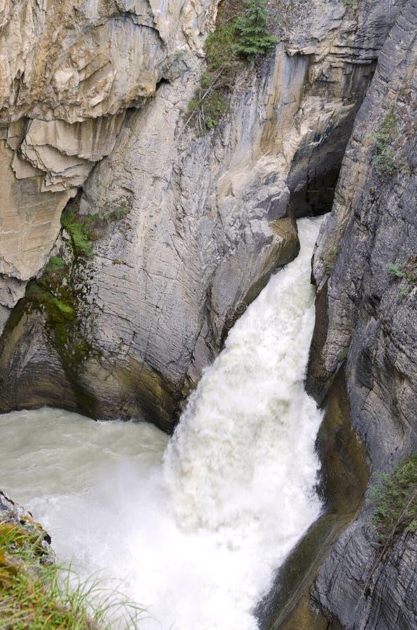 Sunwapta vattenfall arkivfoto