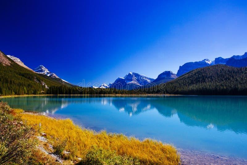 Sunwaptameer, Jasper National Park in Alberta, Canada royalty-vrije stock foto