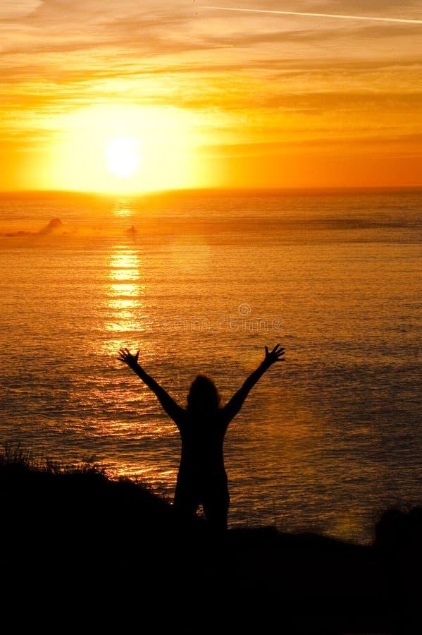 Sunworshipper zdjęcie royalty free