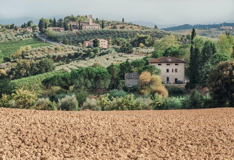 Suolo per l'uva dell'azienda agricola locale nel paesaggio della Toscana con gli alberi del giardino, palazzi, colline verdi Camp immagine stock