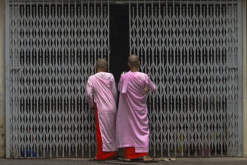 Suore buddisti nel Myanmar immagine stock libera da diritti