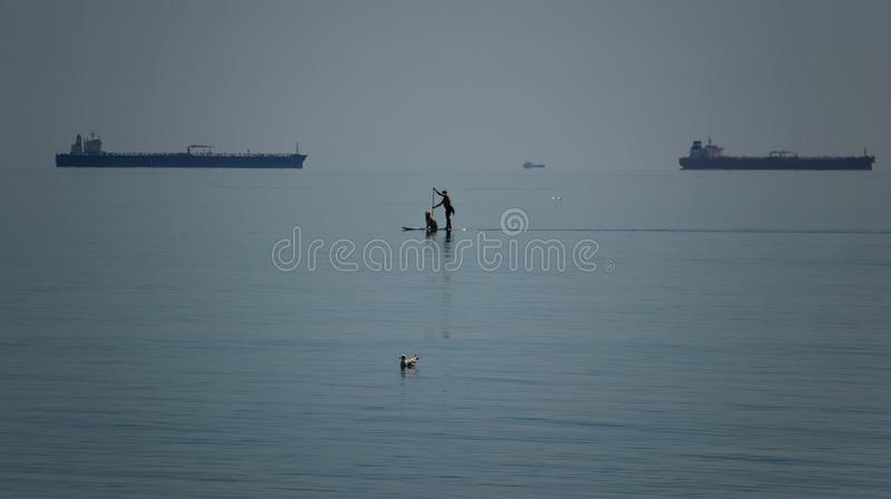 Men and his dog friend sail on a SUP board. stock photo