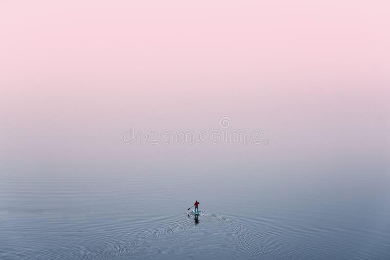 SUP surfar, vista de cima de: O homem só está treinando na placa do Sup em um grande lago durante Pinky Sunset Surfista Homem no  foto de stock