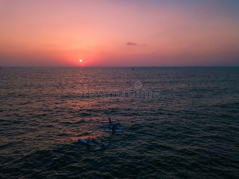 SUP surfare som håller ögonen på solnedgången i havet royaltyfria bilder