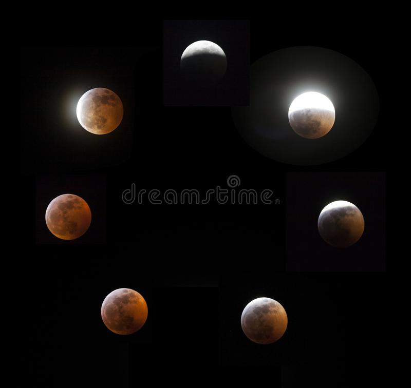 Super Blood Wolf Moon royalty free stock images