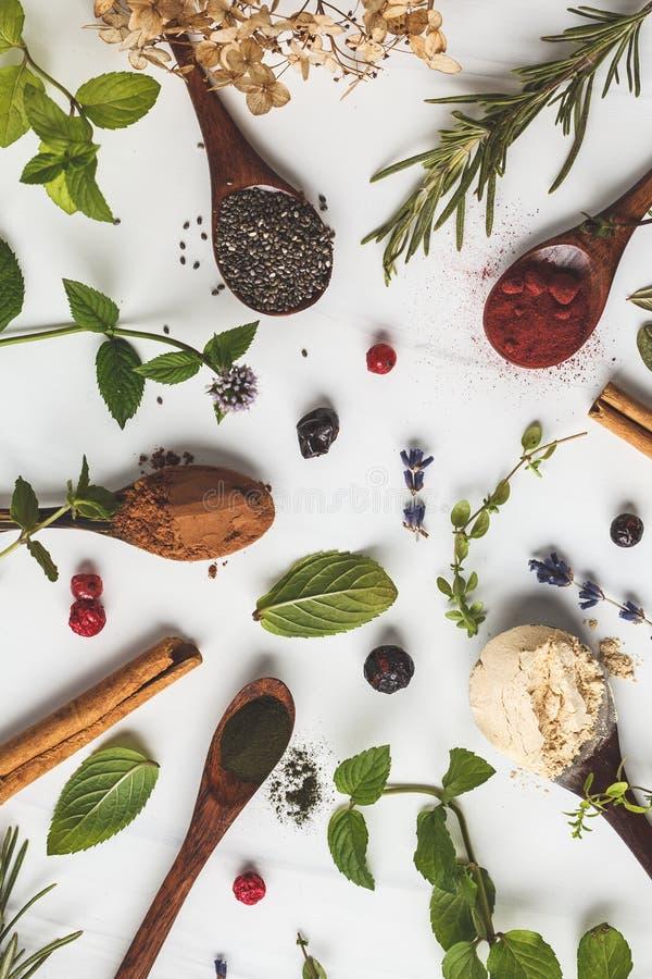 Super foods flatlay: maca proszek, beetroot proszek, chia i konopie, spirulina w drewnianych łyżkach na białym tle zdrowe je?? fotografia royalty free
