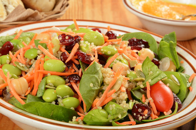 A super healthy salad. Closeup of a healthy spinach salad with super foods and ginger miso dressing on the side stock photo