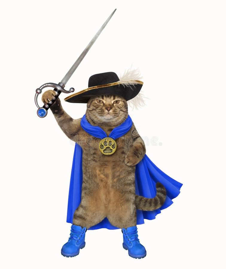 Cat in a blue cloak holds a sword stock photos